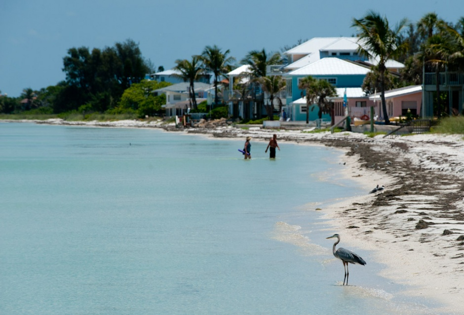 Island Real Estate Rentals Anna Maria Island