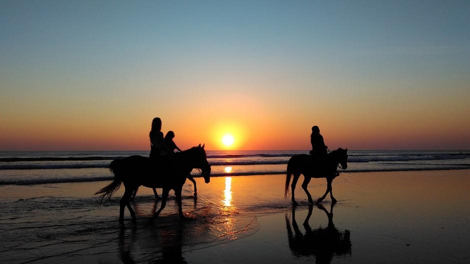 riding horses on anna maria island