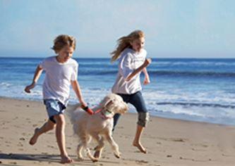 Anna Maria Island Vacationing with Dog