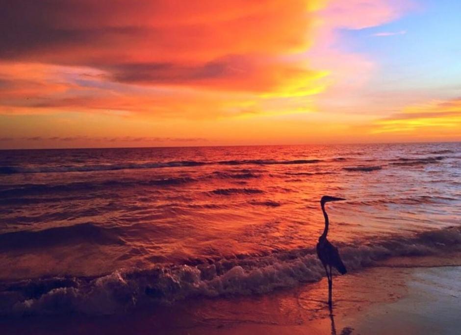 anna maria sunset view