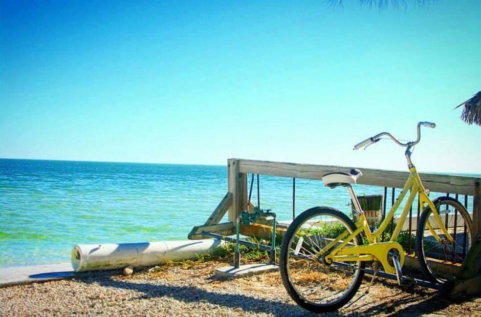 ami bikes
