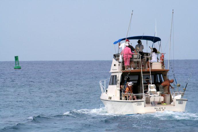 fishing charter anna maria island