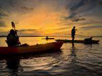 anna maria island kayak tour