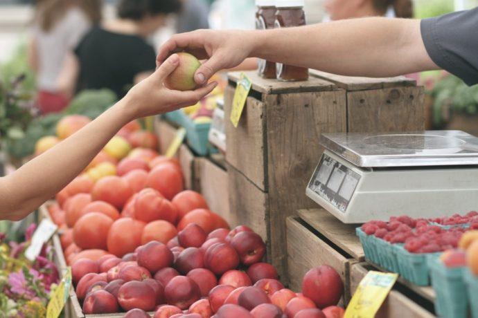 anna maria farmers market
