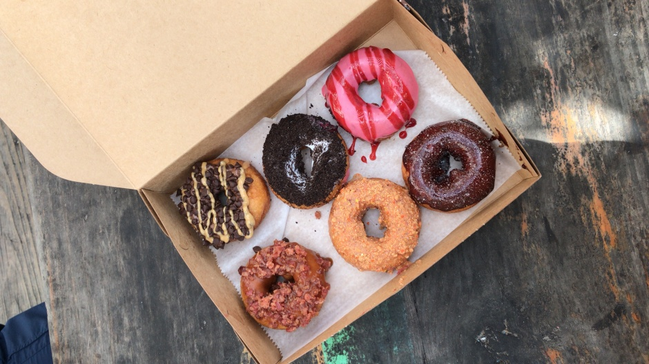 anna maria Donut Expirement